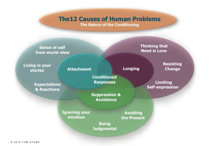 12-causes