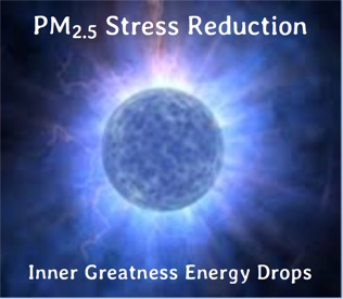 PM-2.5-Stress-Reduction-Energy-Drops-